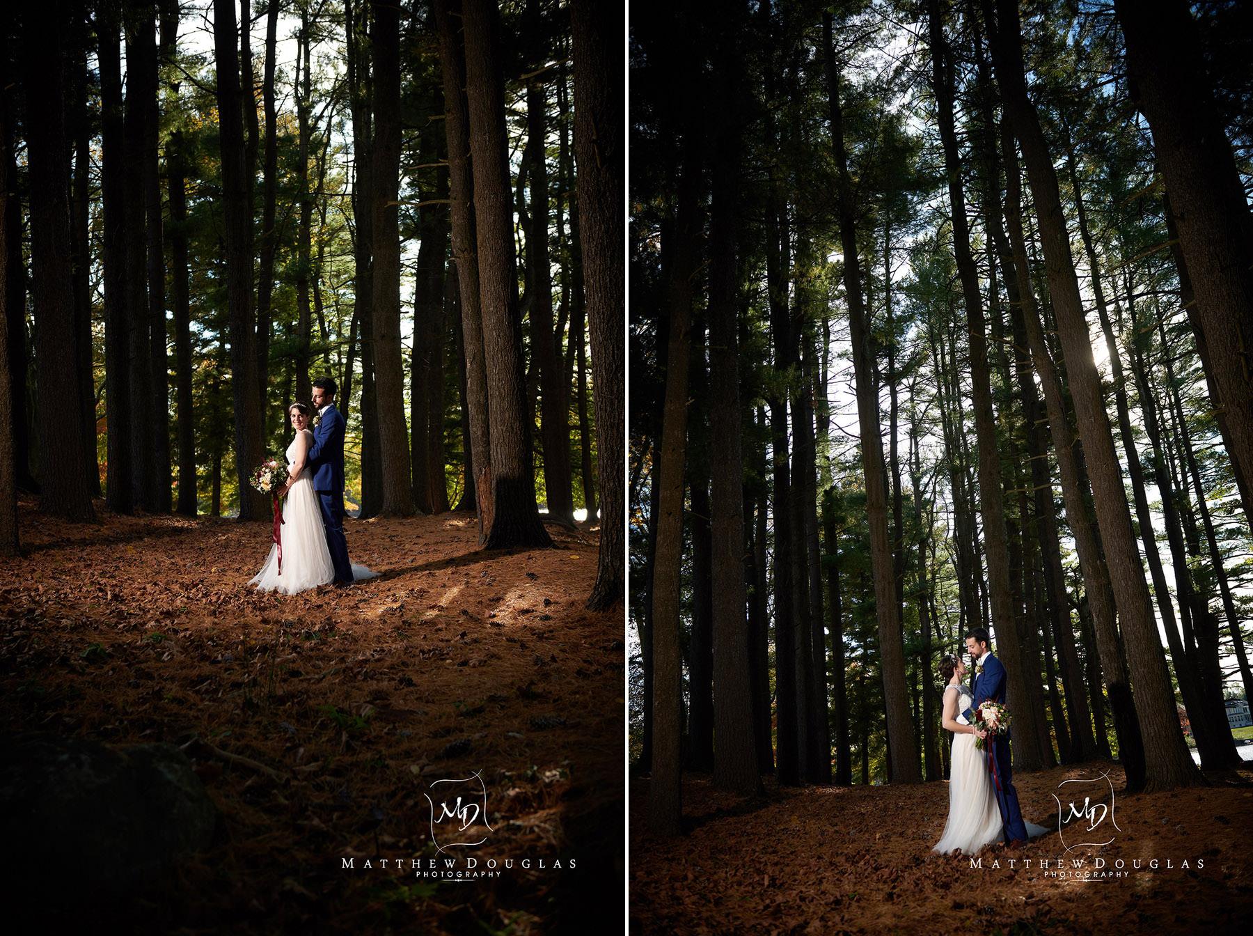 pine grove wedding photos at The Estate at Farrington Lake