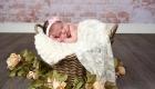 flemington nj newborn photographer