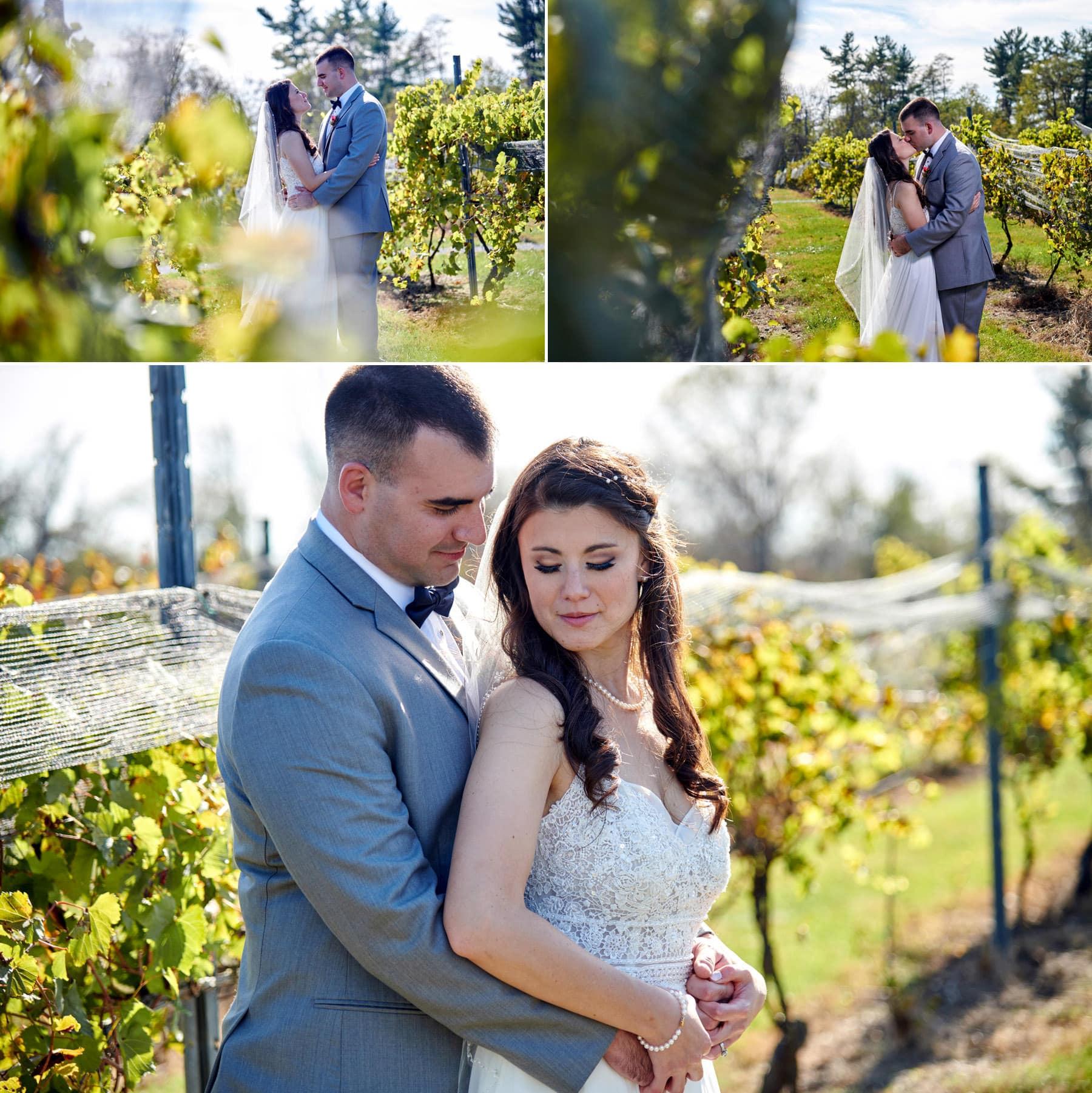 vineyard wedding photos at old york cellars