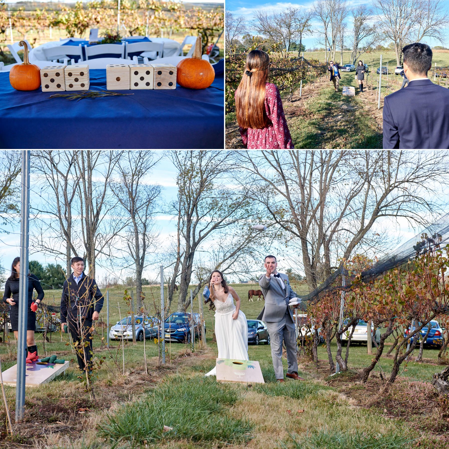 wedding yard games photos