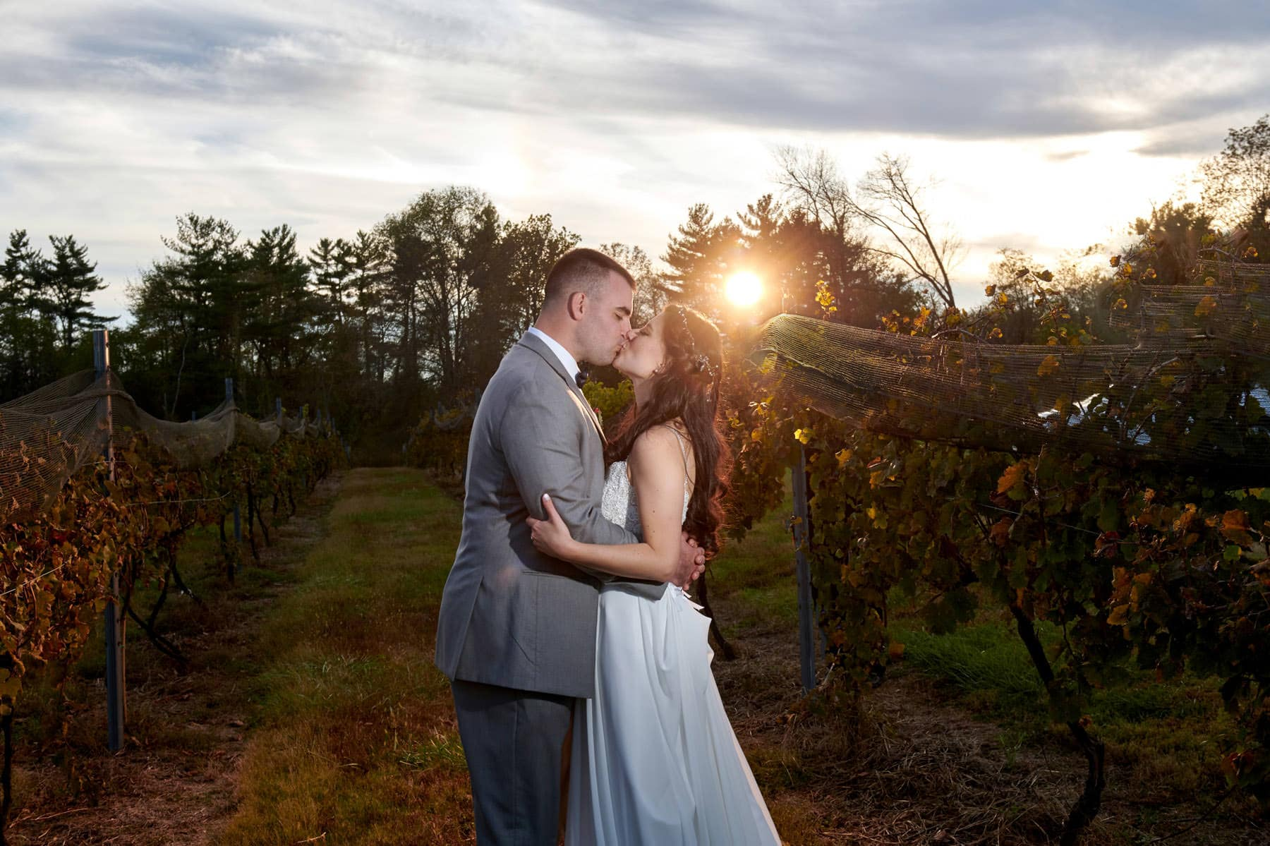 sunset vineyard wedding photo at old york cellars