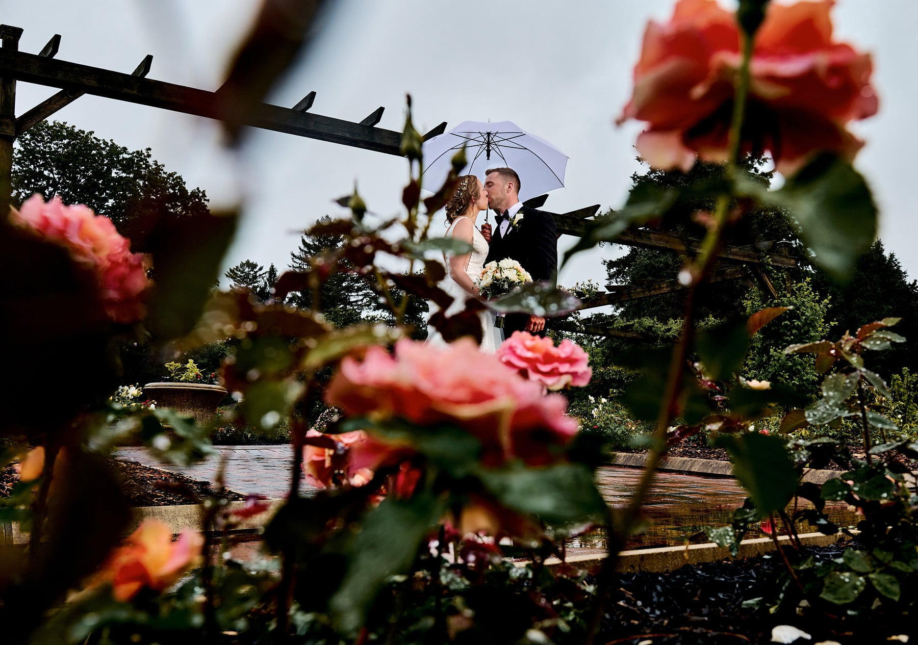 wedding photo in the rain at colonial park rose garden